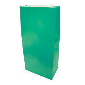"10 PCS GREEN PAPER SACKS 4.5""W X 9.5""L X 2.5"" (24 PACKS) PF-6907"