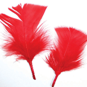 0.49 OZ RED FEATHERS (24 PACKS) PF-2462