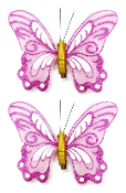 "2 PC 5"" BUTTERFLY CLIPS-PINK (24 PACKS) PF-4502"